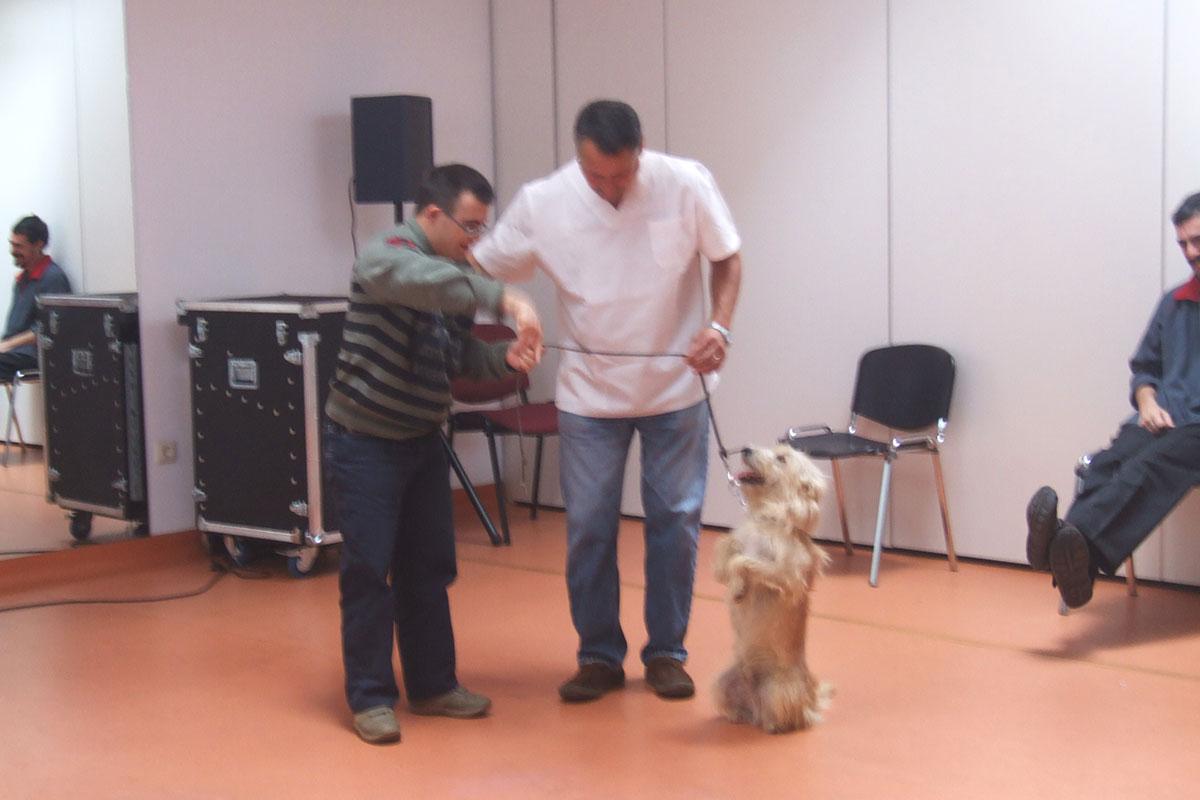 Terapia canina